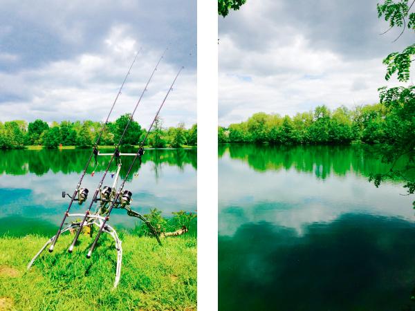 Poste de pêche pour la carpe en no kill, vue du rod pod et de l'étang